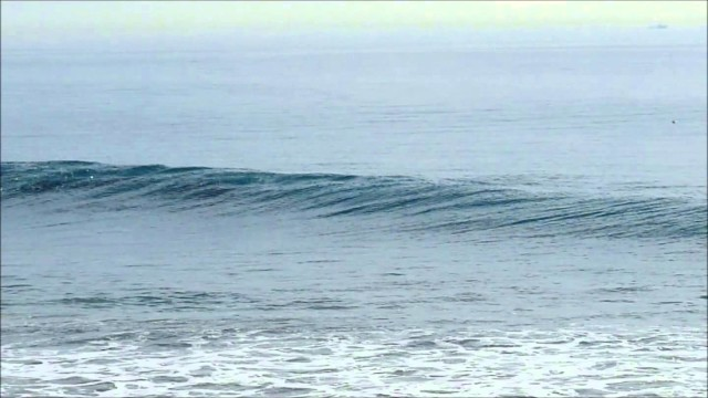Rincon Classic 2014 Dolphins surfing