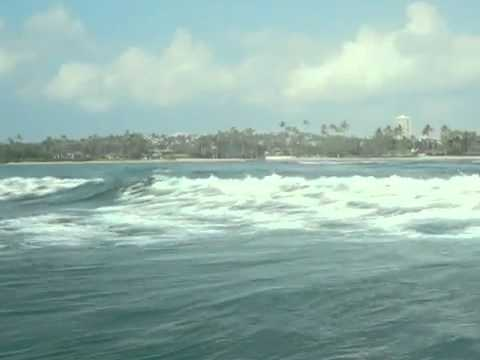 Private Surf Lessons Hawaii – Oahu, Ala Moana (next Waikiki), North Shore River Stand Up Paddle