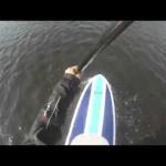 Virginia Power Kites SUP Kitesurfing Snowkiting