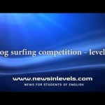 Dog surfing competition – level 2