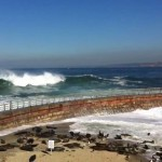 Big Waves Surf in La Jolla Children's Pool Seal Beach