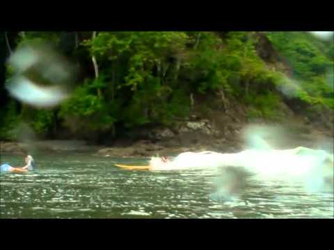 Surfing Lessons in Jaco Beach Costa Rica.wmv http://www.jacocostaricasurf.com/