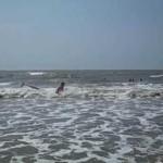 Surfing Isle of Palms, SC – Longboarding July 2009