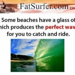Understanding the ocean what are the parts of a surfing wave