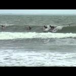 1st Bislig City Surfing Competition Free Surf MaBi Surfers (Mabakat Bislig Surfers)