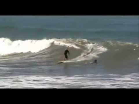 surf longboard  santos  2012 – Paulinho.