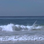 Grom Gets Pitted at Salt Creek During 2014 Surfing Santa Comp