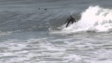 2014 LogJam Surf contest longboard highlights