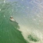 DAY 4 IN THE WATER 2012 Australian Longboard Surfing Open