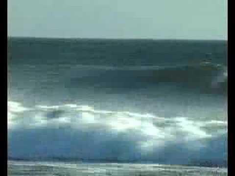 Davidino, Longboarding Costa Rica Waves